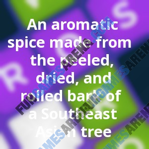 An aromatic spice made from the peeled, dried, and rolled bark of a Southeast Asian tree