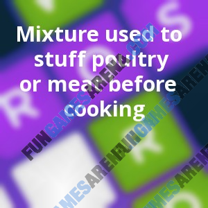 Mixture used to stuff poultry or meat before cooking